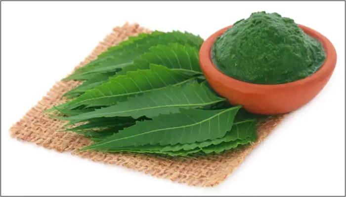 Health tips: వేపాకుతో ఇన్ని లాభాలు, ప్రయోజనాలా ?
