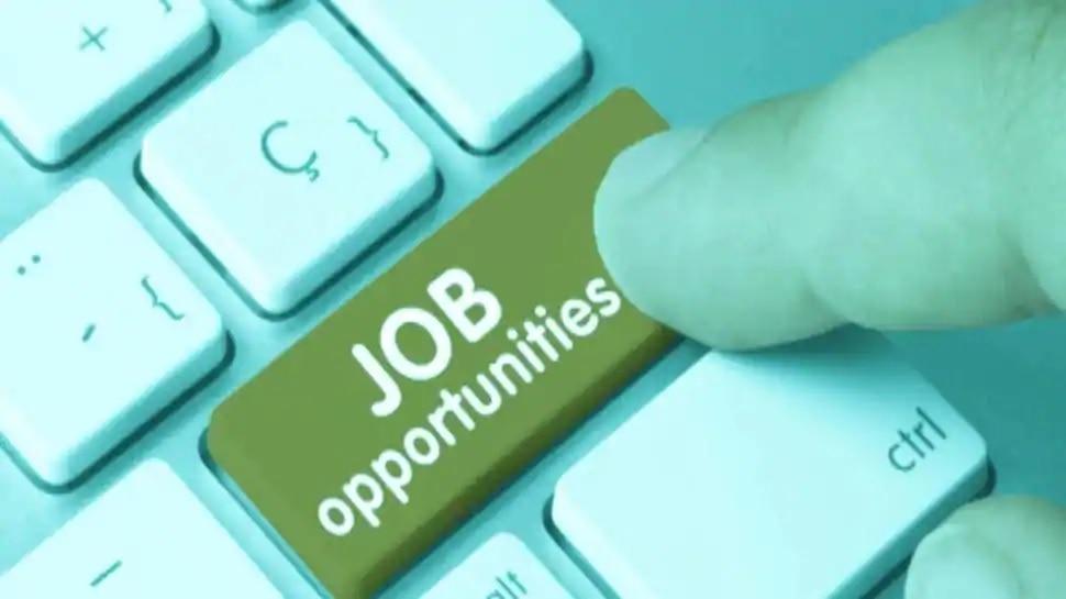 Govt Jobs 2020: 244 పోస్టులకు నోటిఫికేషన్.. రాత పరీక్ష లేకుండా జాబ్స్!