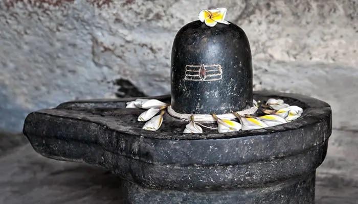 Maha Shivratri 2021: ఈ 7 పదార్థాలు, వస్తువులు శివుడికి సమర్పించకూడదని తెలుసా