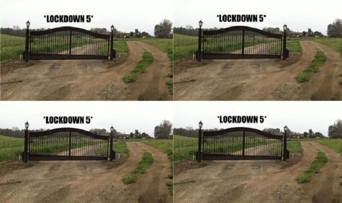 LockDown Jokes