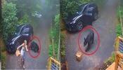 Shocking Video: కార్లో ఎలుగుబంటి...గుండె ఆగినంత పని..నవ్వులు పూయిస్తున్న వీడియో (Viedo)