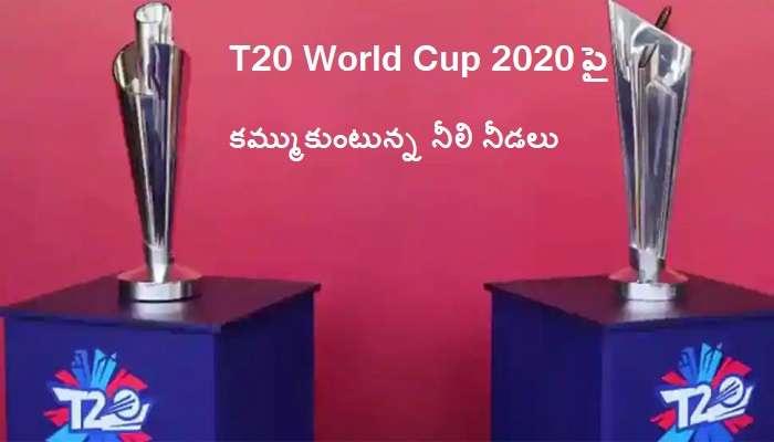 T20 World Cup 2020: టీ20 వరల్డ్ కప్ 2020పై ఎర్ల్ ఎడింగ్స్ కీలక వ్యాఖ్యలు