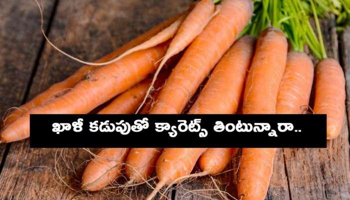 Carrot Benefits: క్యారెట్ తింటే ఈ 10 ప్రయోజనాలు తెలుసా!