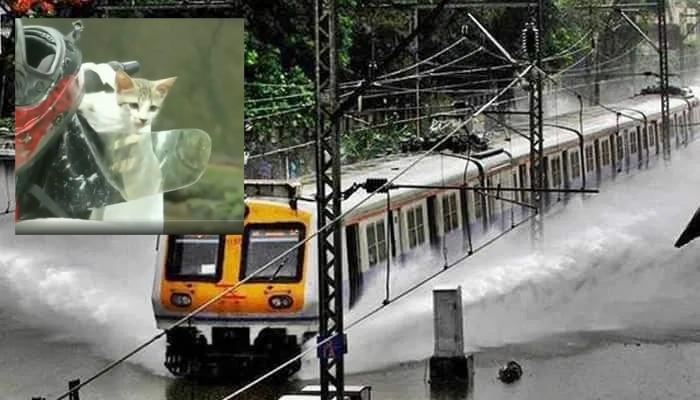 Mumbai Rains Video: దడ పుట్టిస్తున్న ముంబై వర్షాల వీడియోలు