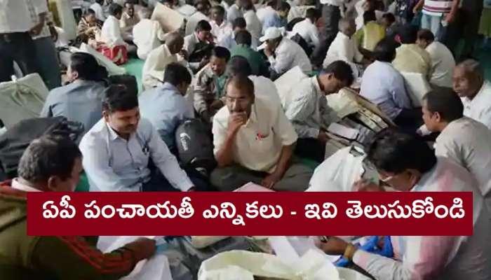 AP Panchayat Election 2021: స్థానిక ఎన్నికల్లో పోటీ చేయాలనుకుంటే అర్హులు, అనర్హుల వివరాలు ఇవే