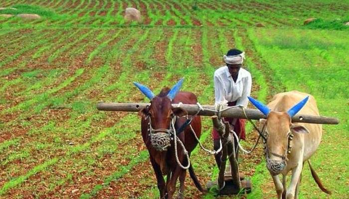Rythu Bandhu Scheme: తెలంగాణ రైతులకు శుభవార్త, రేపటి నుంచే అన్నదాతలకు రైతుబంధు సాయం