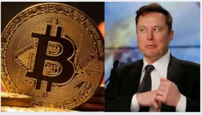 Elon Musk Effect: ఎలాన్ మస్క్ ఎఫెక్ట్ మామూలుగా లేదుగా, క్రిప్టోకరెన్సీ ఒక్కసారిగా ఎలా పెరిగిందో